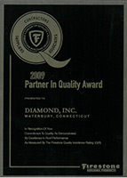 2009 Partner in Quality Award